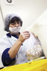 Biosprossen werden abgewogen und verpackt