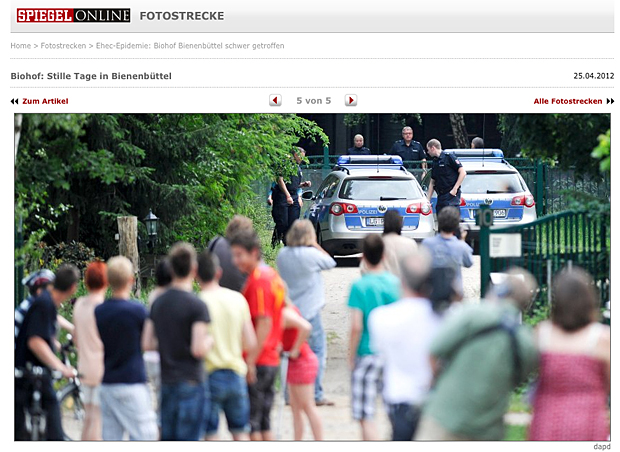 Spiegel_Screen_Blog